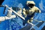 宇航員配槍是為什么?這些生物經常出沒,一度危機宇航員生命