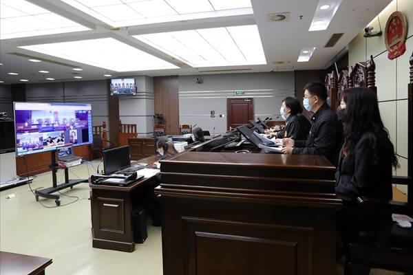 青岛首起野生动物保护民事公益诉讼案一审线上开庭并当庭宣判