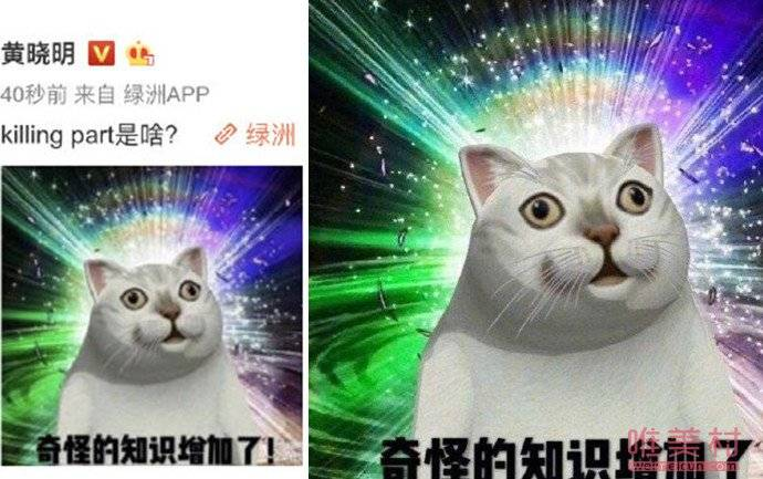 黄晓明问killingpart是啥 killingpart是什么意思?