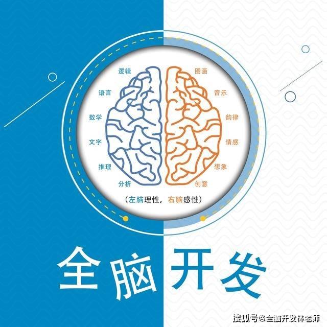 有没有机构说清楚全脑开发的本质是什么,能不能把孩子教好,把老师培训出来?