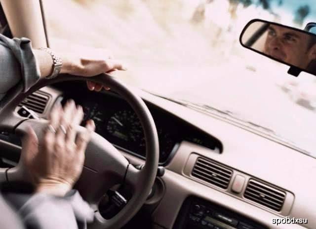 老司机:开车上路,这几种标线都不认识,有3本