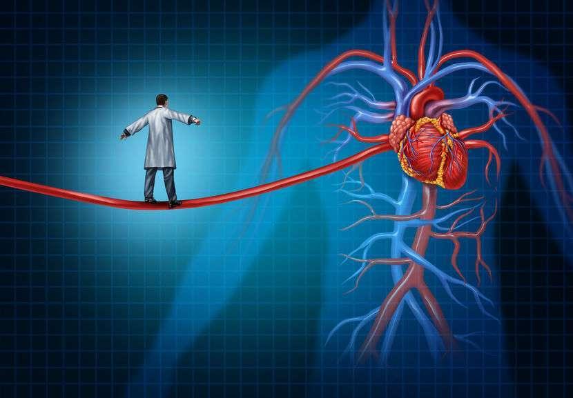 手上的动脉在哪?大动脉的结构特点,多少应该了解下,一文告知 营养补剂 第1张