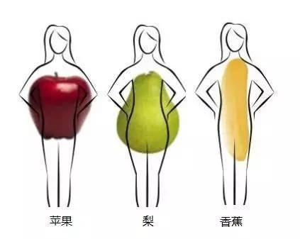 倩狐:为什么肚子上最容易长肉,又最难瘦下来? 减肥方法 第2张