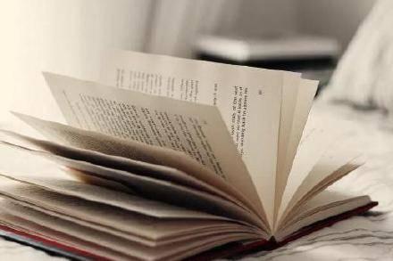 留学生英语论文指导:essay,report,留学写作全攻略