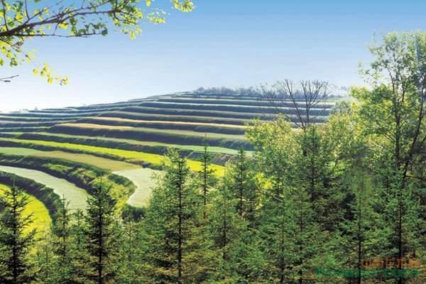 如何在海南注册农林公司?农业公司的注