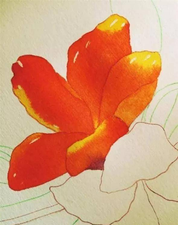 花卉水彩画教程 教你画一幅绚丽多彩的杜鹃花