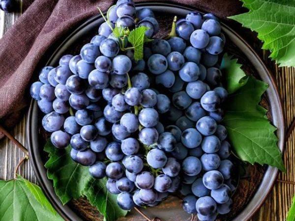 经常失眠的人,以下水果经常吃,补充天然褪黑素,一觉到天亮!