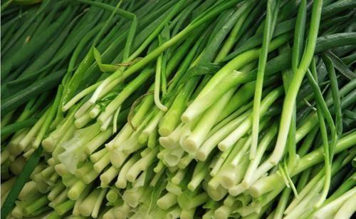 韭菜、菠菜检测出镉超标,是什么原因?吃动物血可以排出重金属?