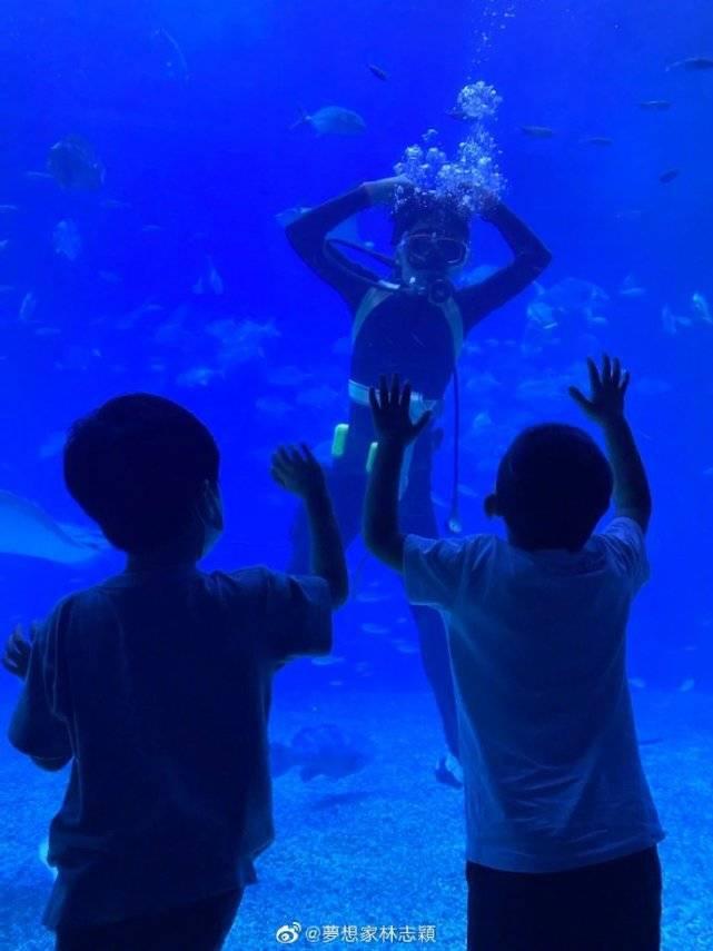 林志颖带仨儿子逛海洋馆,双子星好激动,11岁黑米哥哥超爸爸肩膀