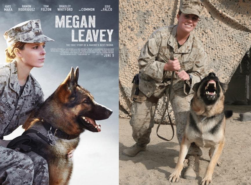 平平无奇的狗子也能化身人类的英雄?
