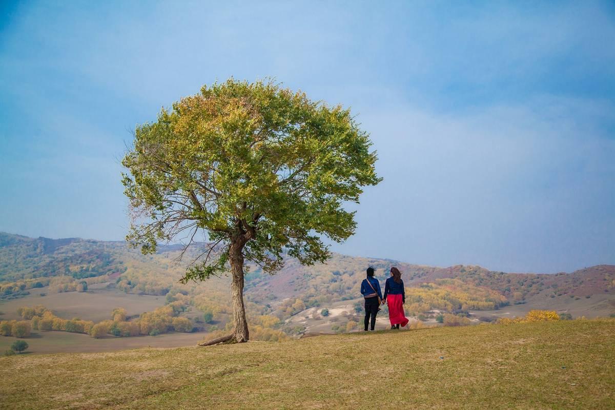 原创             秋意浓郁!9月值得推荐的旅行地,摄影师的天堂,梦幻般的仙境