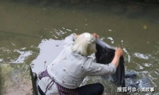 (图片源自网络) 婆婆遭嫌