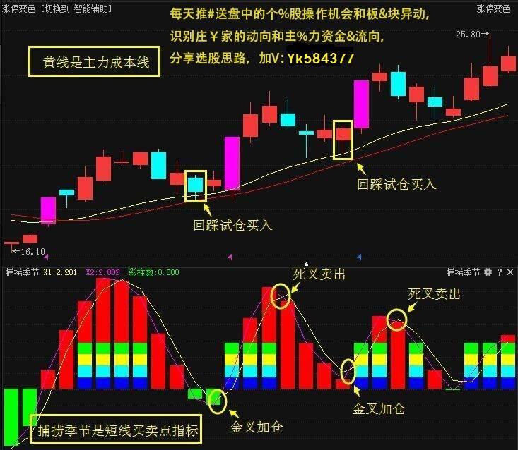 中国股市:越低越高?时机呢?冒险?散