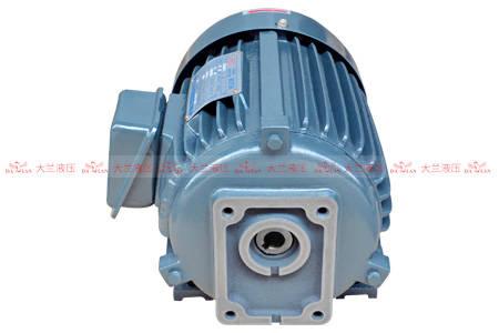 液压油泵电机轴承过热的原因分析及处置惩罚方