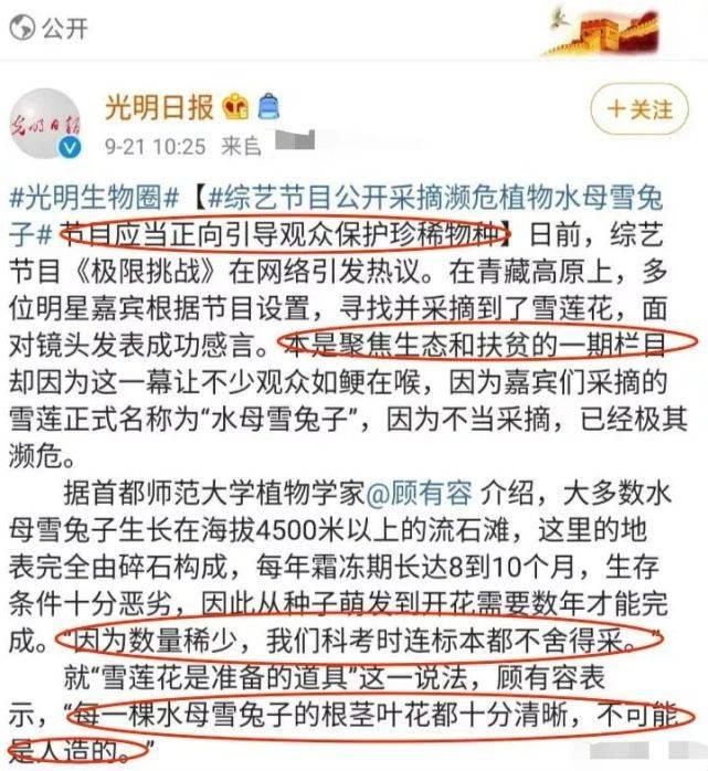 袁野:澳大利亞反華情緒高漲,有人鼓吹和中國開戰