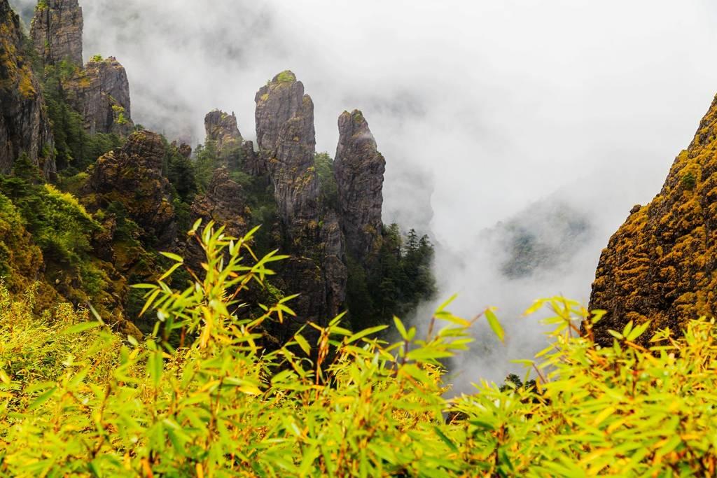 神农架有个神农谷,神农谷上看云雾