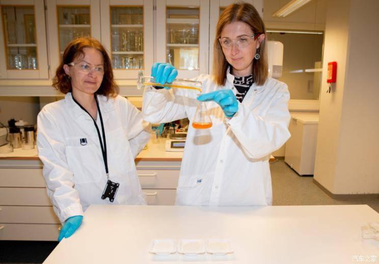 外媒:挪威科学家用三文鱼骨做出汽车阻燃剂材料
