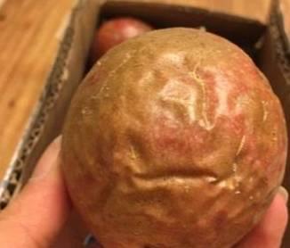 百香果越皱越好吃,每天吃一个,清热解毒、美容养颜,可以试试!