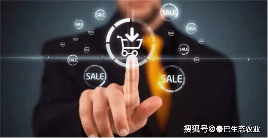 """2020年 """"互联网农业""""已成为一定趋势 """"秦巴味""""呈上升趋势"""