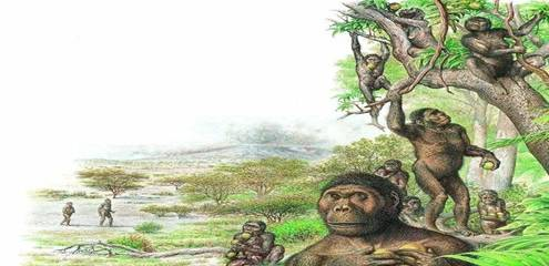 360万年前的脚印是什么意思?