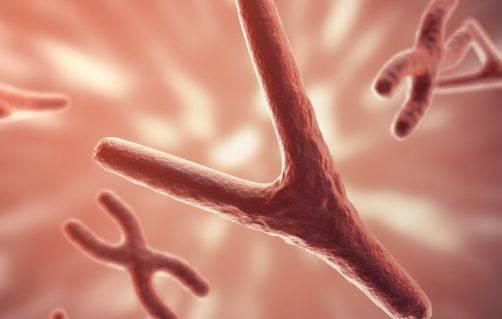 """专家提醒:父母有3种疾病,你们的孩子也可能""""传承""""!"""