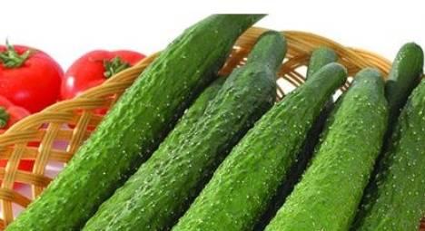 多吃黄瓜好处多多,但吃完黄瓜一小时内,别碰此物!
