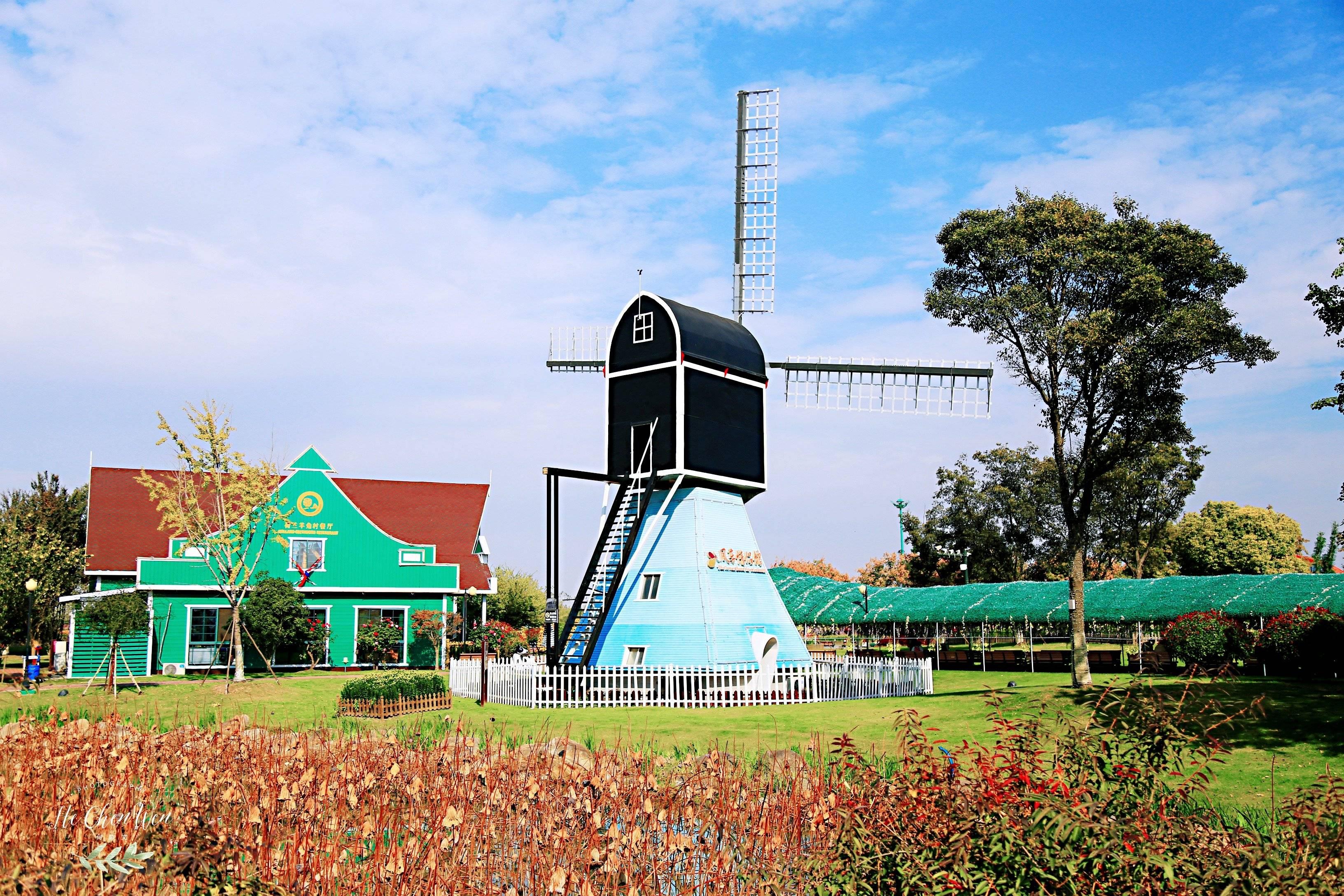 原创             中国郁金香第一花海,充满浓浓的荷兰风情,游客都慕名来打卡
