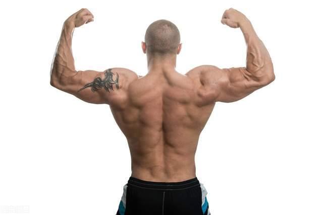几个动作全方位雕刻三角肌,练出球形肩膀,让身材更加有型!