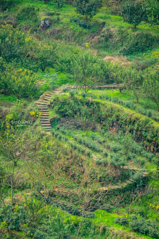 """原创             天府之国藏有一个""""天府橙都"""",四川这个地方真是宝地,风物无穷"""