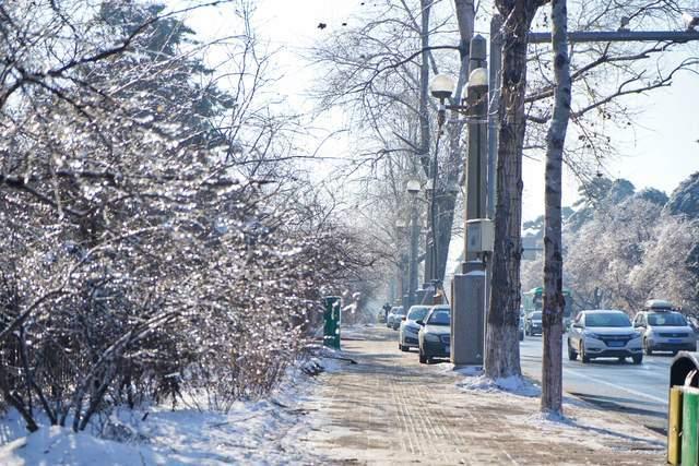 """原创             吉林最强冻雨后,满街都是""""钻石""""亮晶晶,南方姑娘一见倾心"""