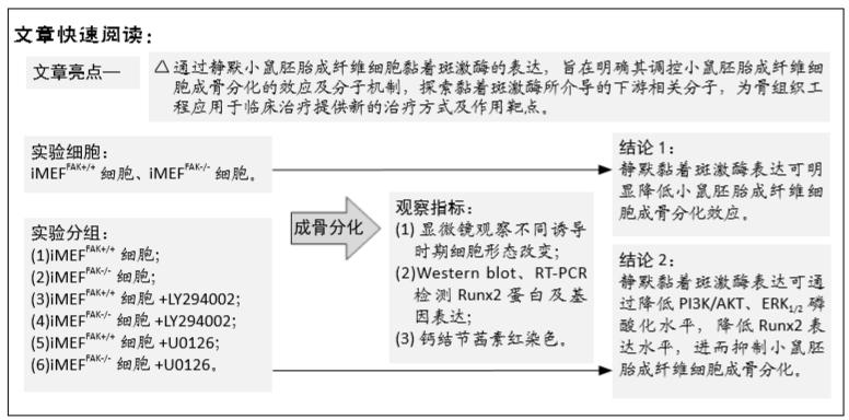 质粒转染的原理及作用_花的种类图片及名称