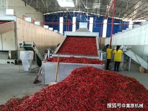 辣椒的传统干燥方法和机械干燥方法有什么区别