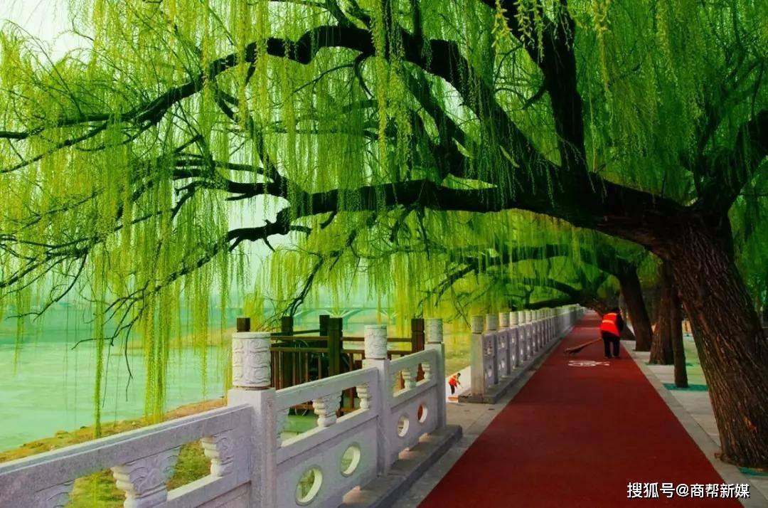 黄河故事系列诗歌之一五五:郑州某年