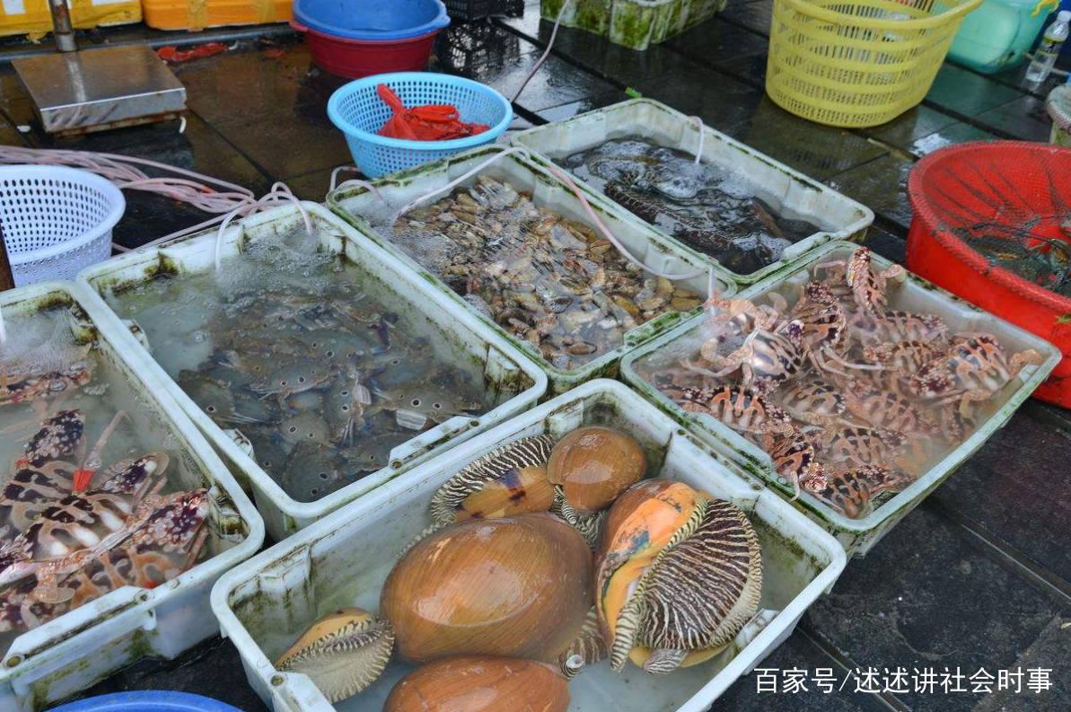 """20斤的海螺里都是""""屎"""",老板怒斥不会吃就别吃,网友:暴殄天物"""