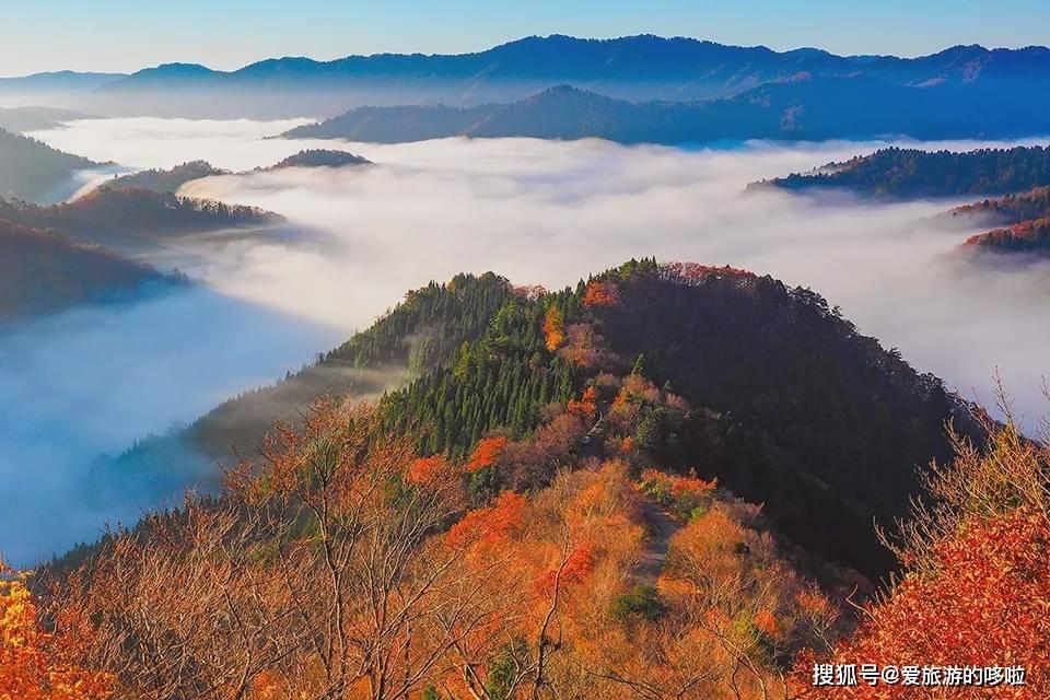 日本观云海的十二大圣地,仙气十足犹如梦境!