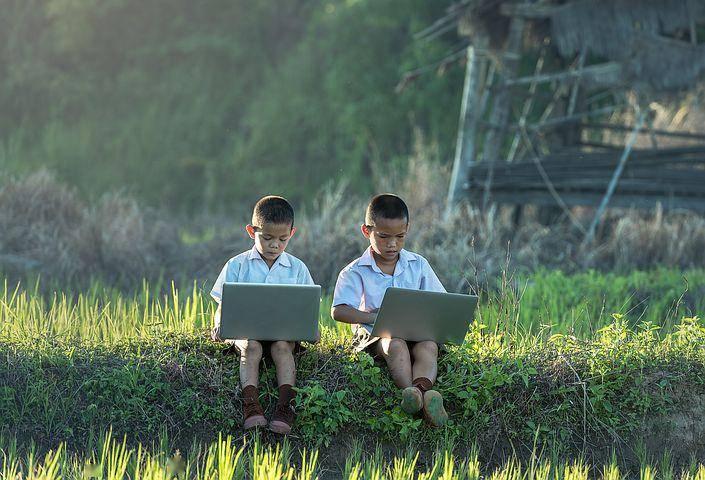 烧钱的在线教育,离庞氏有多远?
