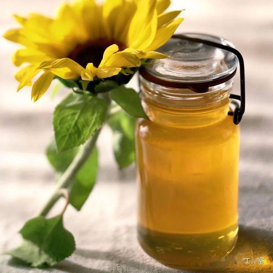 蜂蜜罐卡通图片