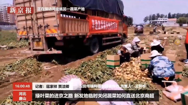 溯源商超蔬菜直采地 超市日供80品种最快40分钟抵京