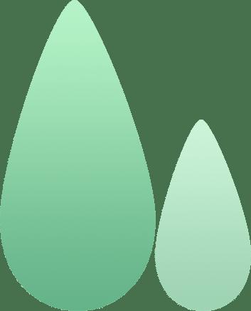植树节正式写入法律