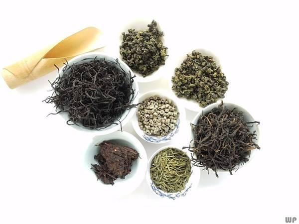 生活中常见的菊花,泡茶喝竟有4个好处,老年人尤其喜欢!