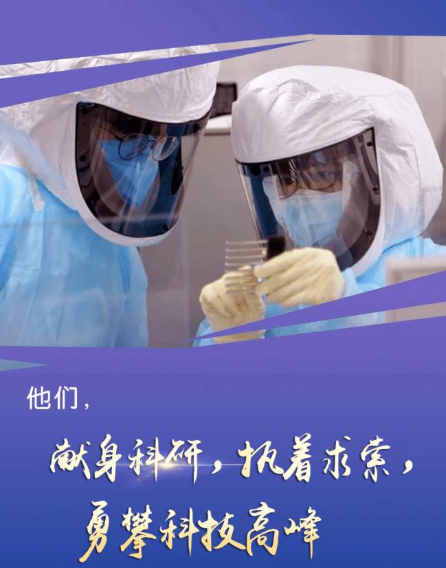 [招标公告]白土岗乡泾兴村10集团温室建设