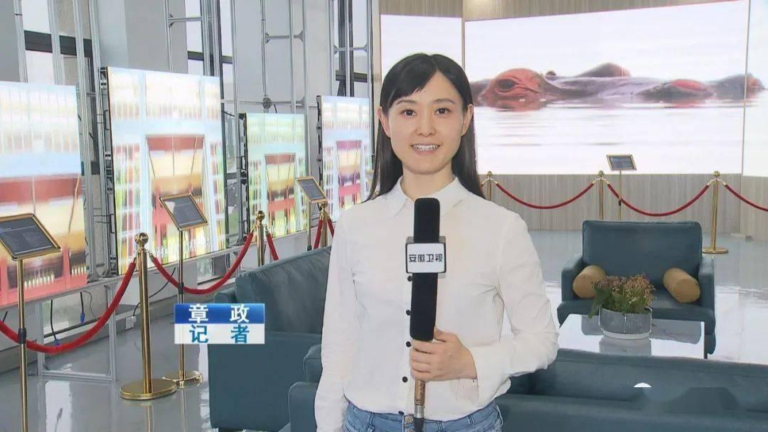 安徽技术进出口_今年上半年安徽外贸进出口呈现稳中向好态势_产品