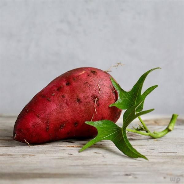 红薯叶含胡萝卜素多吗,夏天多吃,是好是坏呢