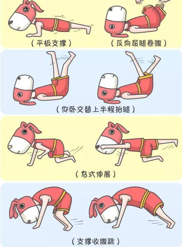 腹部减肥训练