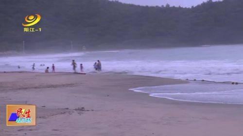 海陵岛敏捷沙滩现大量死鱼