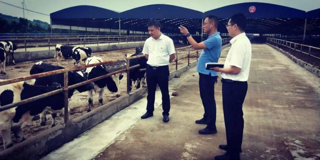 鲁山联社探索助农惠农新模式助力脱贫攻坚