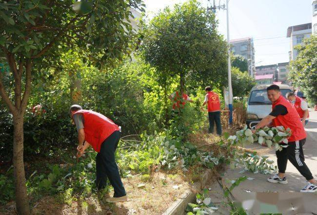 娄底市中心医院组织志愿者进社区开展卫生清扫活动