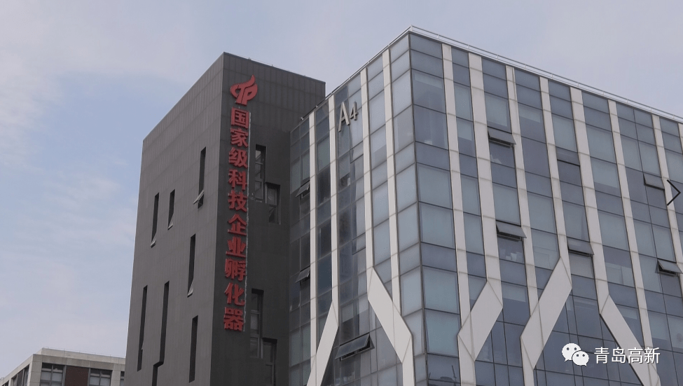 """青岛高新区科技企业孵化器荣获""""山东省"""