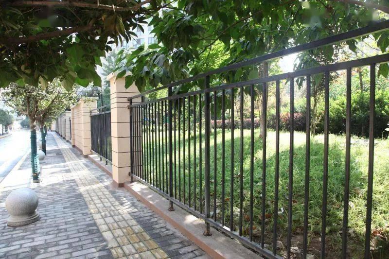 """9月2日,家住莲湖区解家村社区的王秀娟老人,正坐在解家村规划路边桂花树下乘凉,说起眼前这条路近期的变化,老人说:""""变化太大了,垃圾没有了,墙面也粉刷了,环境变美了,空气也好了."""""""