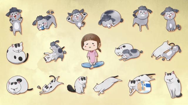 《养猫养狗每天很开心》10月开播 描绘了松本饲养猫狗的有趣的日常生活